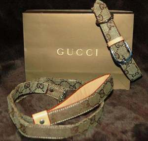 Gucci collection for dogs