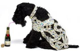 Vivienne Westwood line for dogs