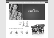 Aaron Basha official ecommerce